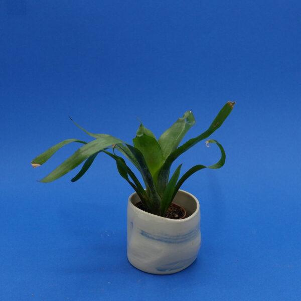 sofiedecleene-keramiek-bloempot-blauw1